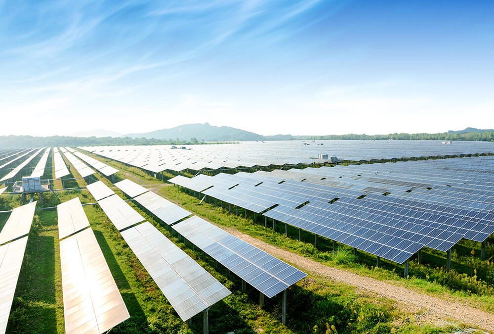 Solar Power Advancements Inspired by Nature