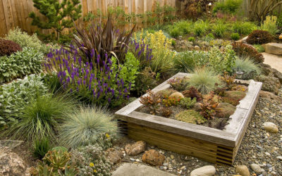 Sustainable Landscaping: What is it and How do I do it?