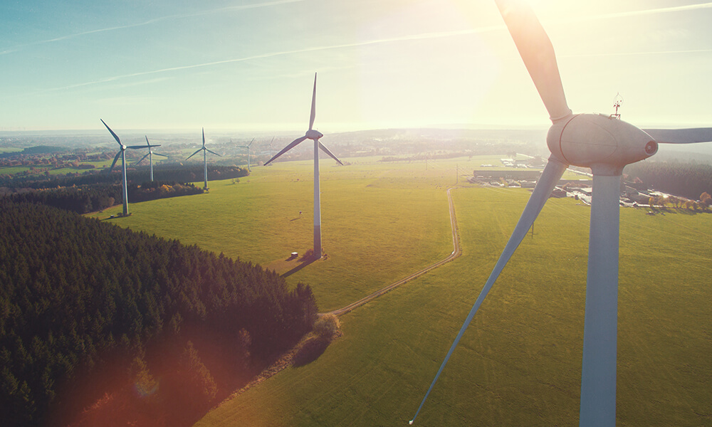 a field of wind turbines a source of renewable energy