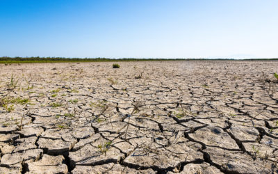 Scientists Suspect Severe Climate Change Effects by 2030
