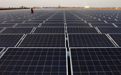 Solar Down, but not Out, After Trump Tariffs